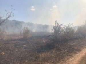У Хмільницькому районі знову гасили пожежу сухої трави