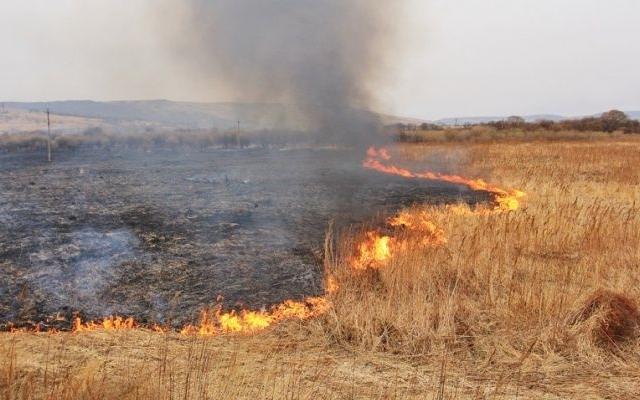 У Хмільницькому районі горіла суха трава