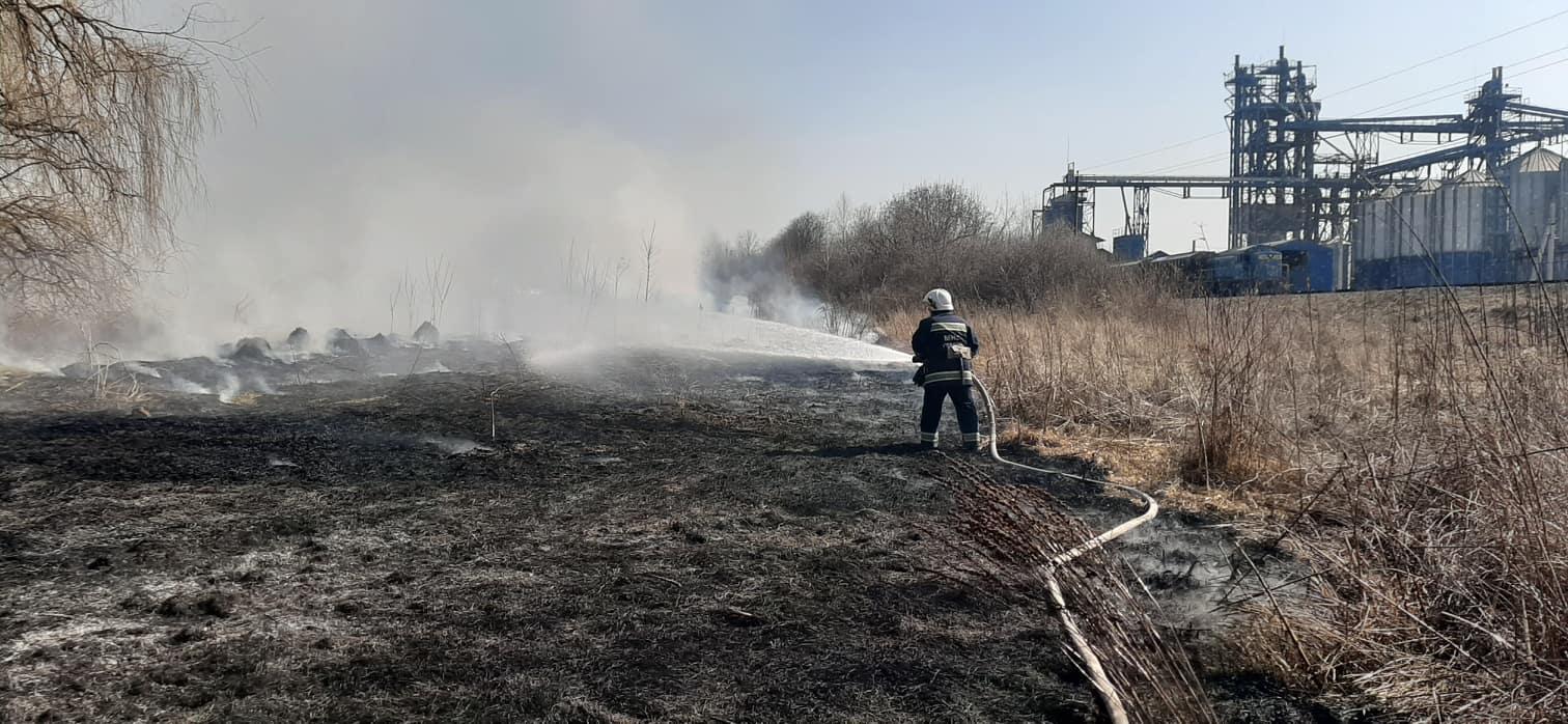 Суху траву знову підпалили у Хмільнику…