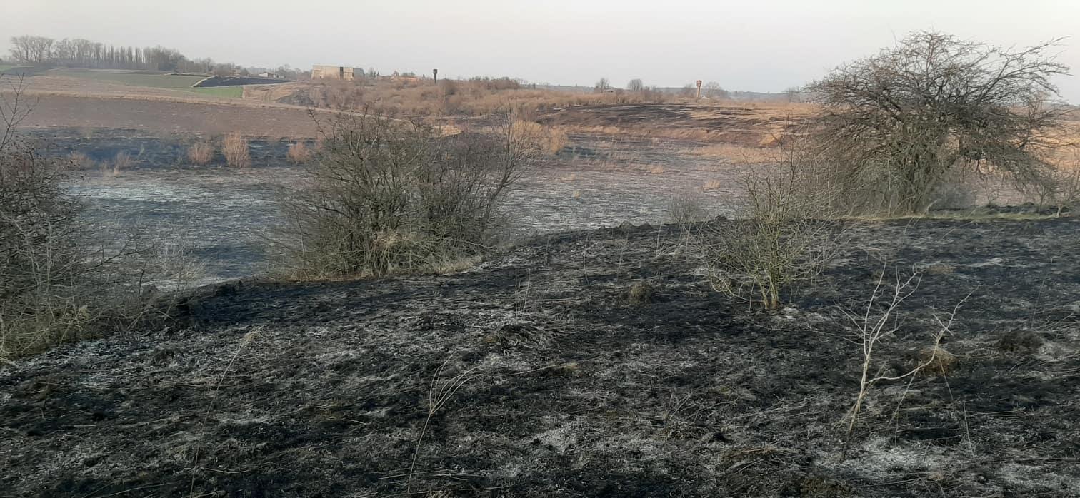 Знову підпали сухої трави у Хмільницькому районі. У Мар'янівці вогонь ледь не перекинувся на ліс…
