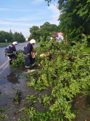 Хмільник та Хмільницький район опинились вчора під ударом стихії…