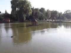 """Пляжна зона, скейт-парк і """"Кальмарове царство"""" – ці та інші локації планується зробити в Хмільницькому міському парку"""