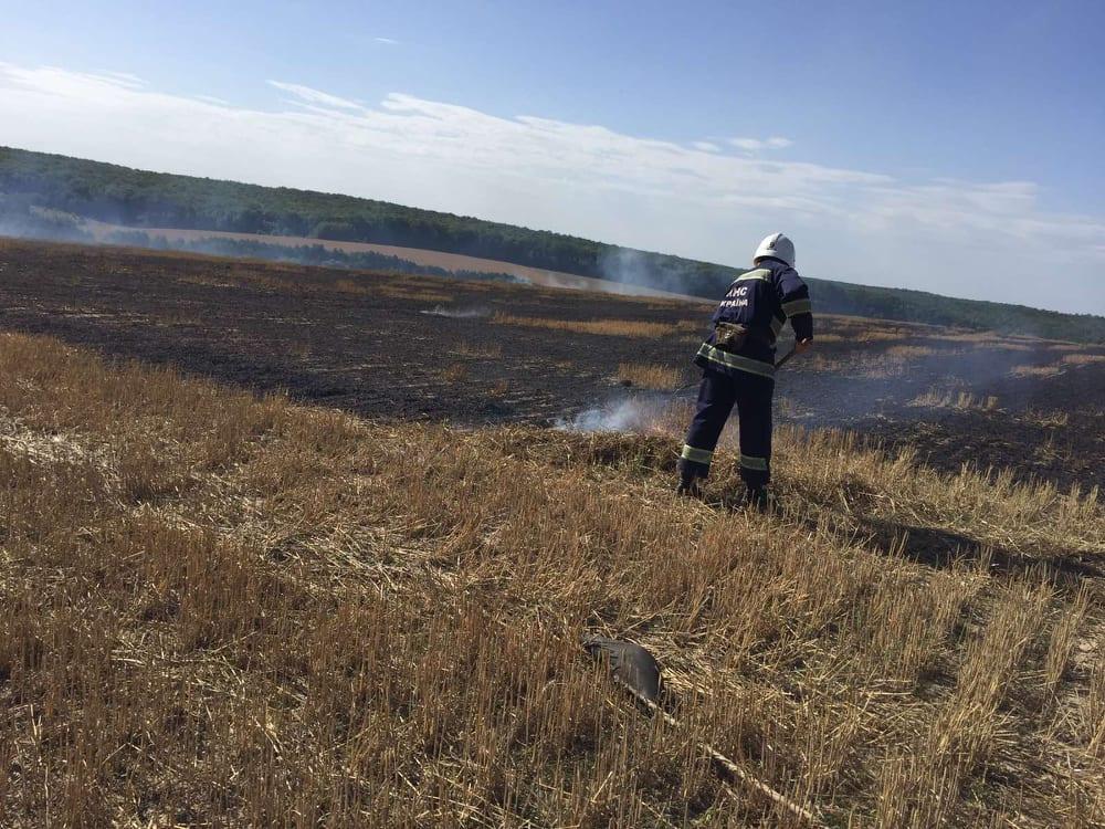 Стерню підпалили у селі Вуглах… Вогонь наблизився до кукурудзяного поля.