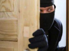 У Хмільницькому районі поліцейські затримали серійного крадія