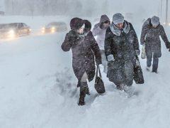 Потужні снігопади та люті морози прогнозують синоптики на Вінниччині уже найближчими днями