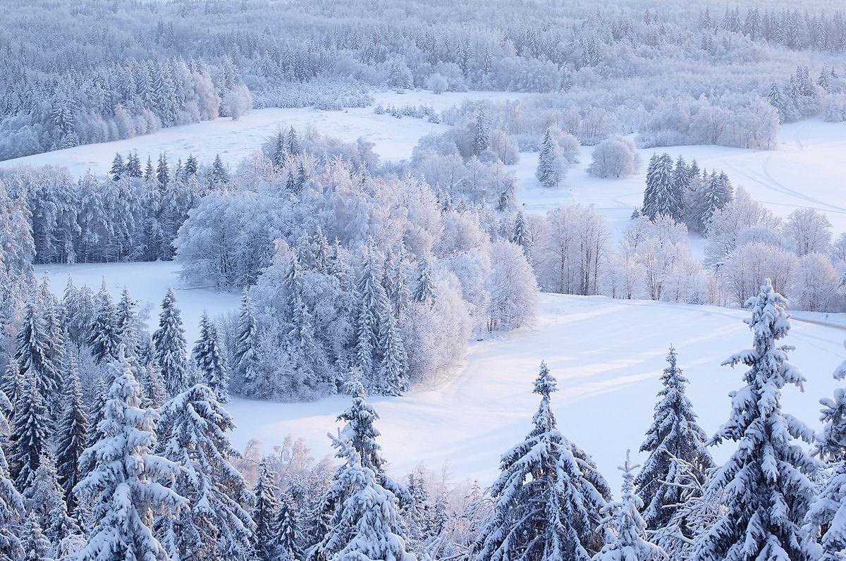 Синоптики спрогнозували, коли слід очікувати похолодання і сніг
