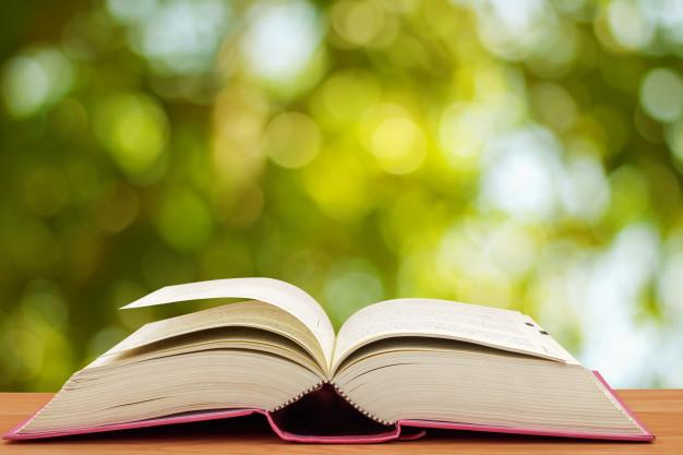У Всесвітній день книги – поради кожному про інтелектуальну власність, авторське право і плагіат