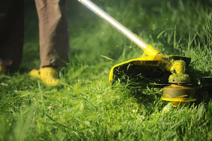 Хмільничан штрафуватимуть за несвоєчасне скошування трави біля приватних будинків