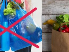Верховна Рада заборонила пластикові пакети: чи подорожчають через це товари?
