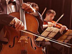 У міському парку Хмільника звучатиме класична музика