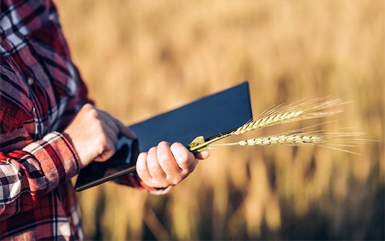 В Україні запрацює аграрний реєстр