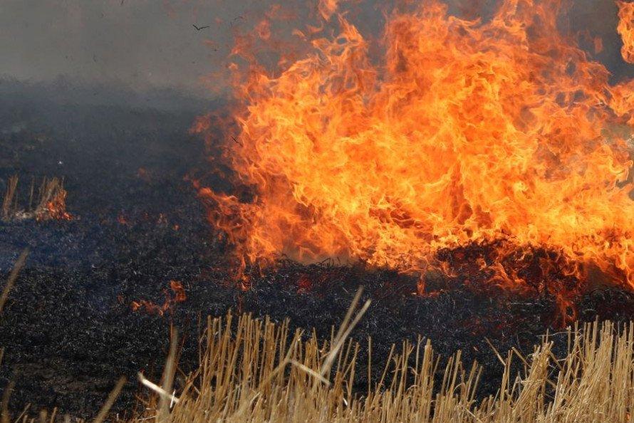 В Україні оголосили найвищий рівень пожежної небезпеки: на Хмільниччині пожежі в екостистемах завдали значні збитки